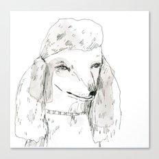 Poodle Canvas Print