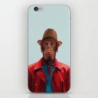 Polaroid N°9 iPhone & iPod Skin