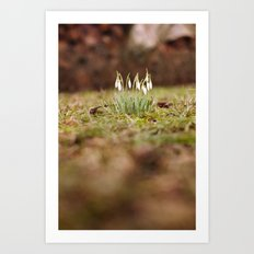 Hello Spring II Art Print