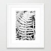Walking In The Woods Framed Art Print