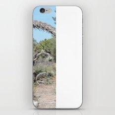Joshua Tree Arch iPhone & iPod Skin
