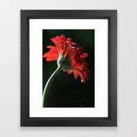 The Red Sun Dancer Framed Art Print