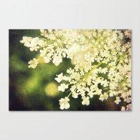 Sunshine White Canvas Print