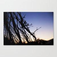 Shine Through The Vine Canvas Print