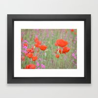 Poppies and Campions Framed Art Print