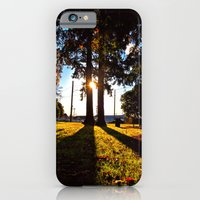 iPhone & iPod Case featuring Autumn afternoon by Vorona Photography