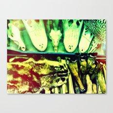 Used Animal Parts Canvas Print