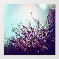 Holga Flowers II Canvas Print