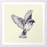 Lost Bird Art Print