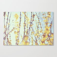 Yellow Daydreams Canvas Print