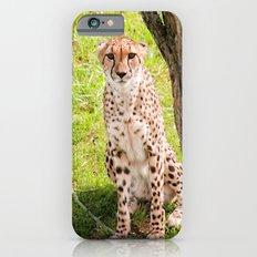 Hey Kitty iPhone 6s Slim Case