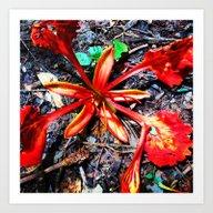 Flor Rojo Art Print