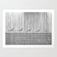 FIVE LITTLE BIRDS Art Print