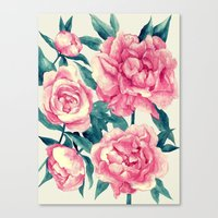 Peonies (soft Tone) Canvas Print