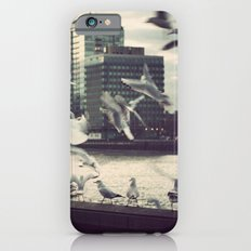 Pigeon Whisper    iPhone 6 Slim Case