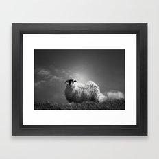 le fluff Framed Art Print
