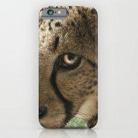 Cheetah iPhone 6 Slim Case