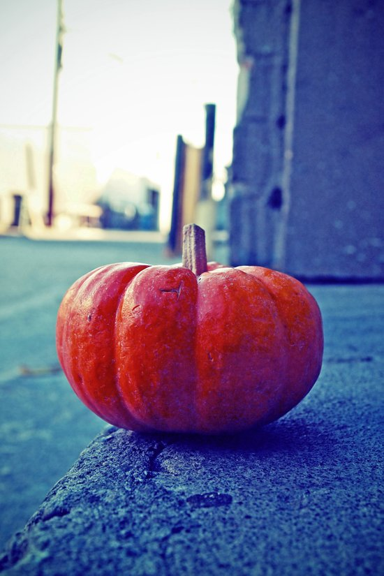 Alleyway pumpkin Art Print