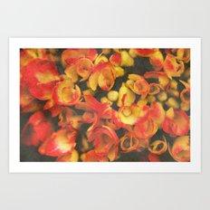 Hortensie 1 Art Print
