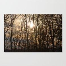 Iowa Winter Sun Canvas Print