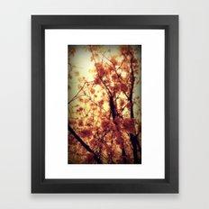 Burst Into Light Framed Art Print