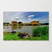 Black Swans At Leeds Cas… Canvas Print