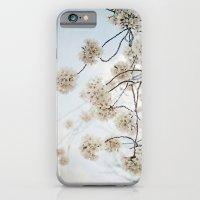 Sakura -- Spring Botanical, Cherry Blossoms iPhone 6 Slim Case