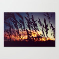 Prairie Skies Canvas Print