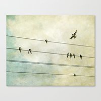 Spread My Wings And Fly Canvas Print