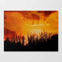 As the Day Fades Canvas Print