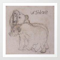 URSIDAE 1 Art Print
