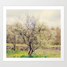 Lensbaby Spring  Art Print