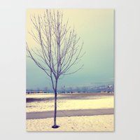 Okanagan Winter Blues Canvas Print
