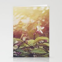 Lemon Flowers Stationery Cards