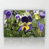 Violets on a rainy morning Laptop & iPad Skin