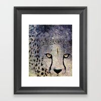 Cheetah, Namibia Framed Art Print