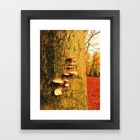 Forest of the Fairies Framed Art Print