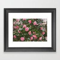 Pink Spring Framed Art Print