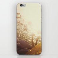 swans iPhone & iPod Skin