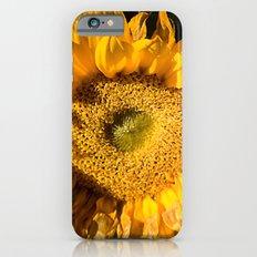sunkissed sunflower iPhone 6 Slim Case