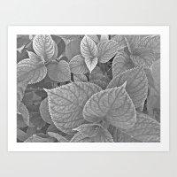 Carbón Art Print
