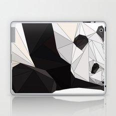 pa Laptop & iPad Skin