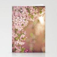 Pink Frame Stationery Cards
