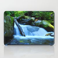 Nature's Remedy iPad Case