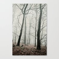 Bare Trees In Fog Canvas Print