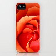 Orange Rose iPhone (5, 5s) Slim Case