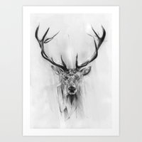 portrait Art Prints featuring Red Deer by Alexis Marcou