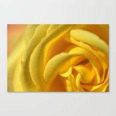 Orient Rose 2486 Canvas Print