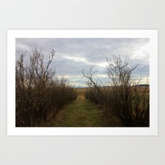 pathways (one) Art Print