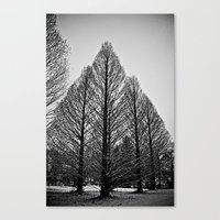 Winter Session Canvas Print